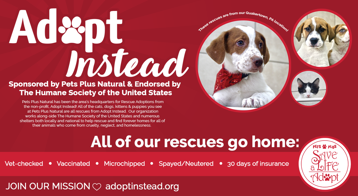 Save a Life, Adopt Instead. Learn More: