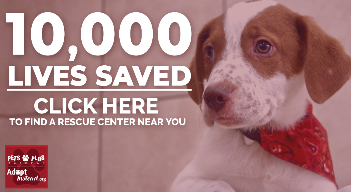 Save a Life, Adopt Instead. Find a Center Near You