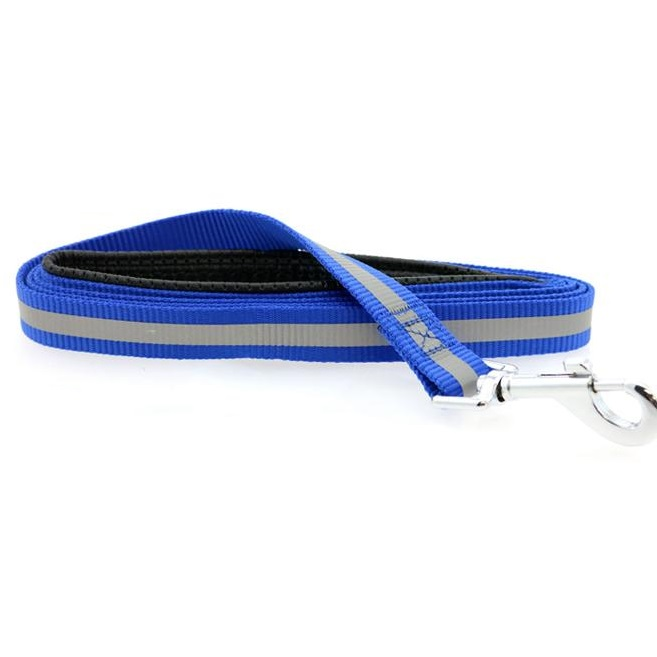 Doggie Design Basic Reflective Dog Leash, 5-ft x 3/4-in, Cobalt Blue