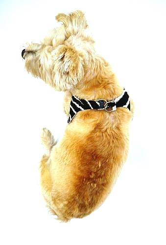 The Dog Squad Starlet Dog Harness, Zebra, X-Small