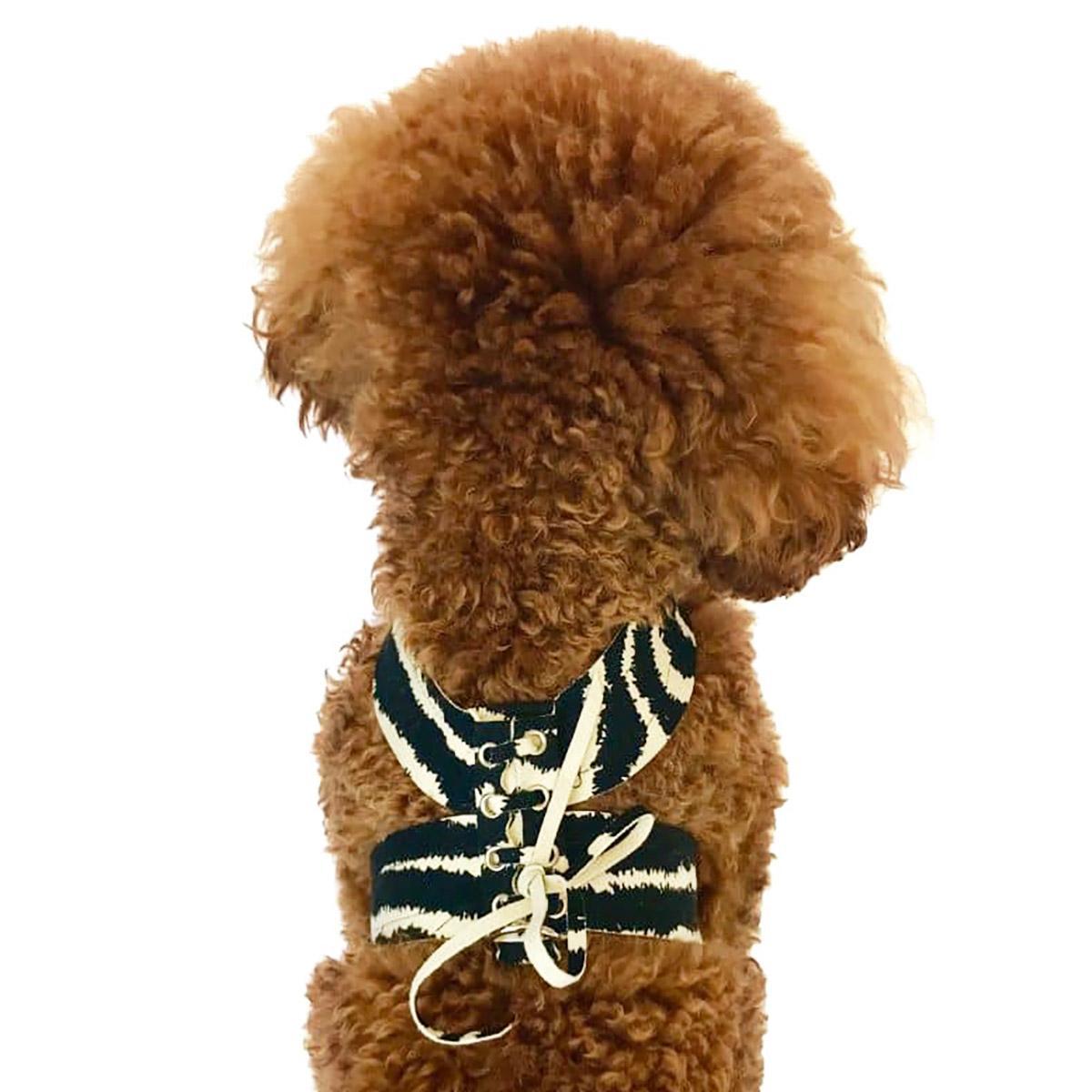 The Dog Squad Parisian Corset Dog Harness, Zebra, Small