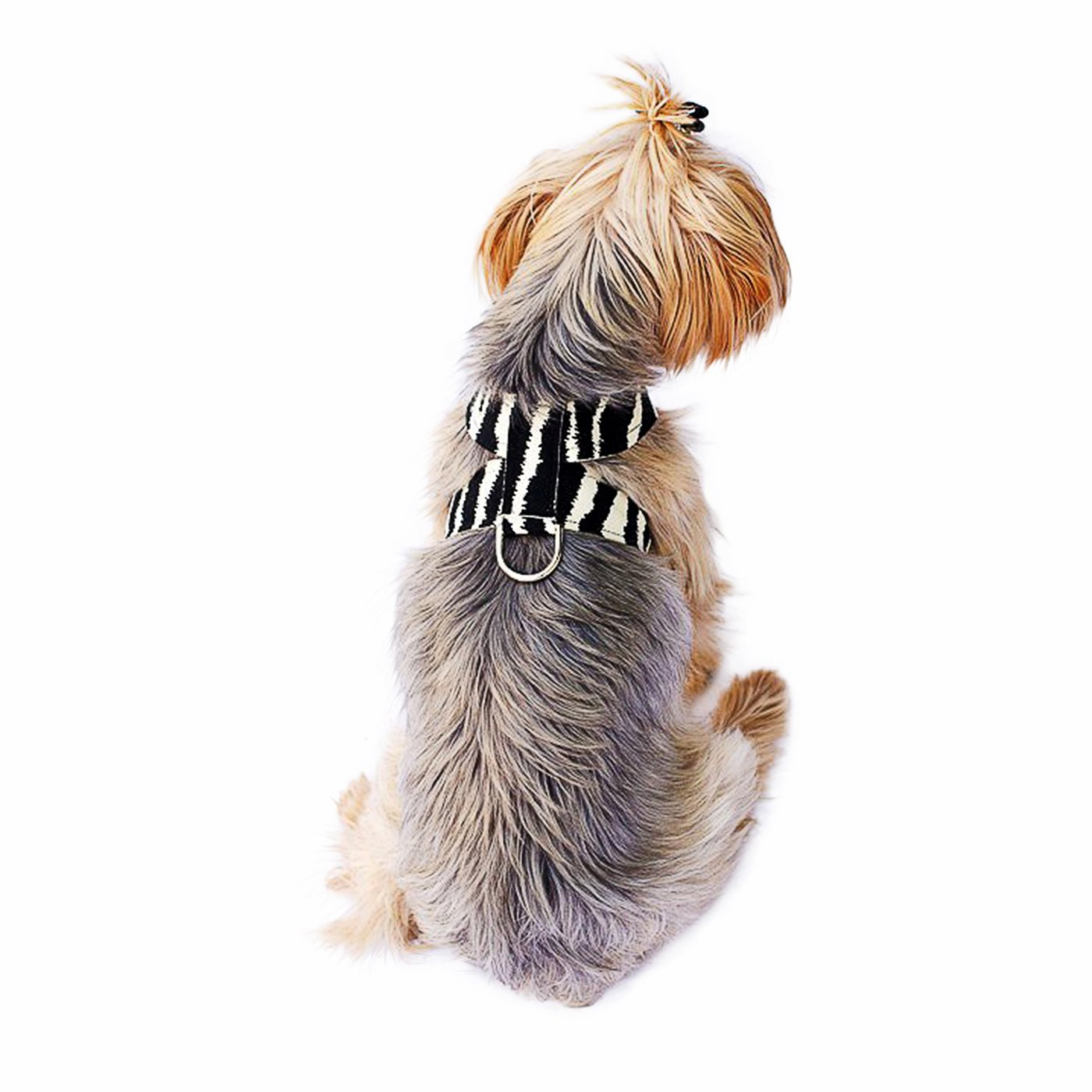 The Dog Squad Hollywood Quick Release Ultra Suede Dog Harness, Zebra, X-Small