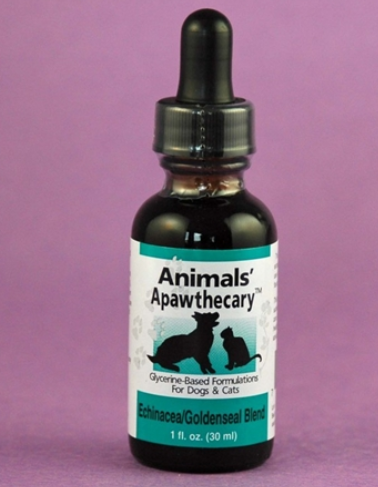 Animal Essentials Echinacea/Goldenseal Immune Support Dog & Cat Supplement, 1-oz bottle
