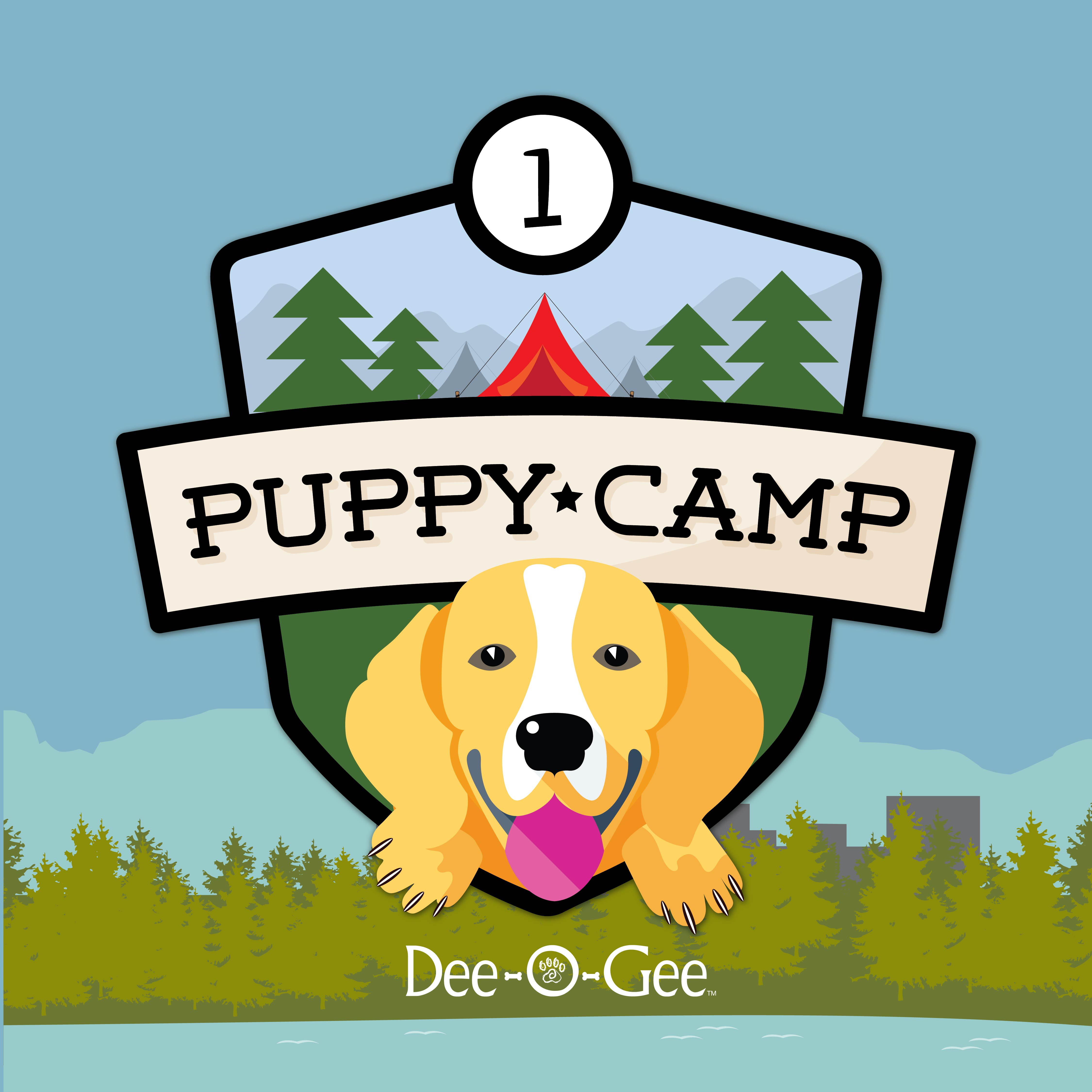 Dee-O-Gee Puppy Camp 1