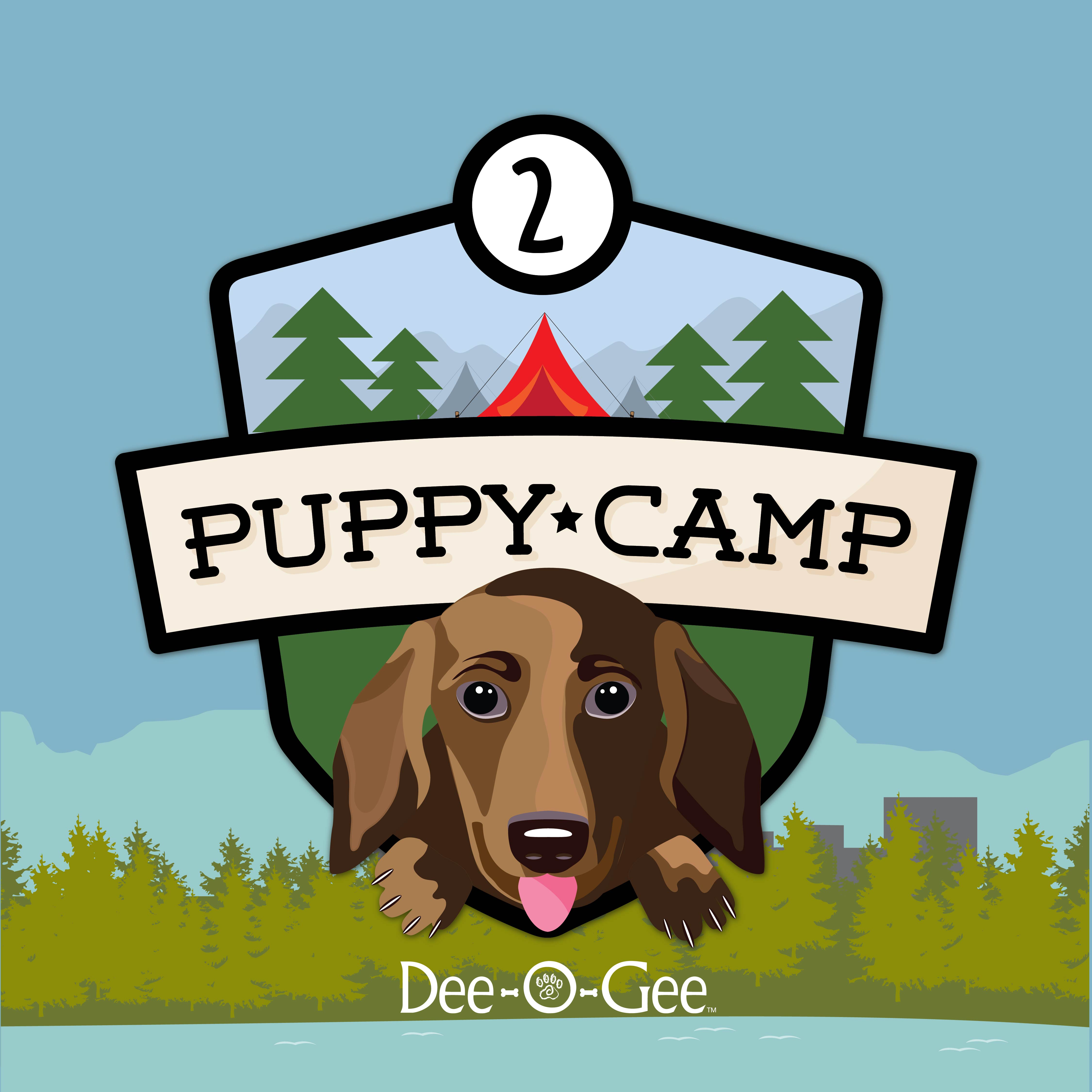 Dee-O-Gee Puppy Camp 2