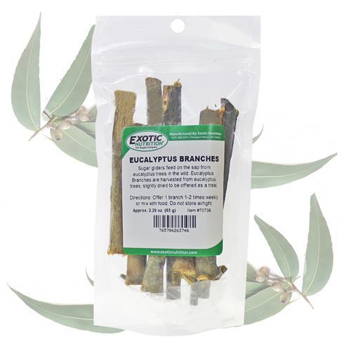 Exotic Nutrition Eucalyptus Branches Sugar Gliders Treats, 65-g