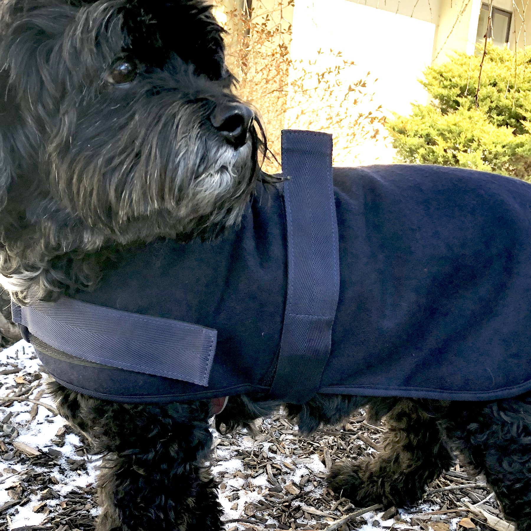 HuggleHounds HuggleWear Dog Jacket, Solid Blue, X-Large