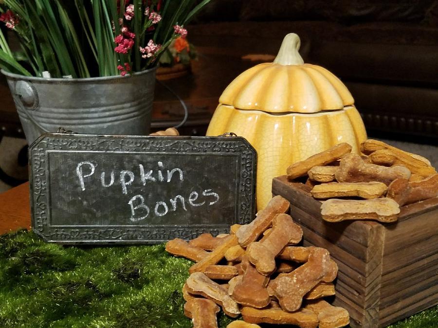 Mooch's Munches Pupkin Bones Dog Treats, 1/4-lb