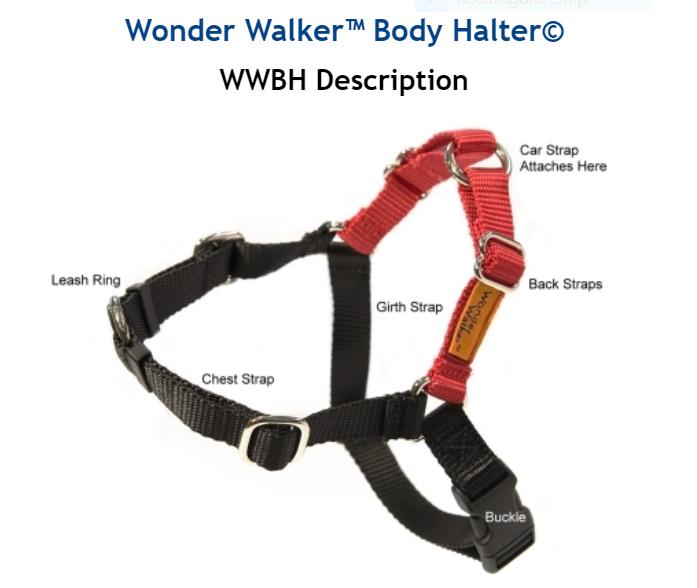Dolan's Dog Doodads  Wonder Walker Body Halter Dog Harness, Light Blue, Large, 1-in