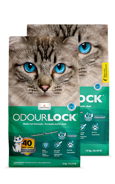 Intersand Odourlock Calming Breeze Cat Litter, 25-lb