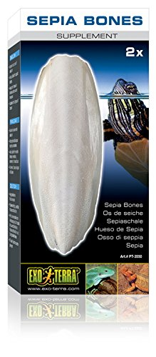 Exo Terra Sepia Bones Turtle Supplement, 2-count