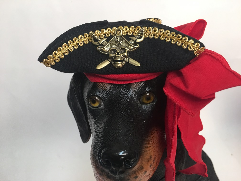PAMPET / Puppe Love Dog Hat, Buccaneer Pirate