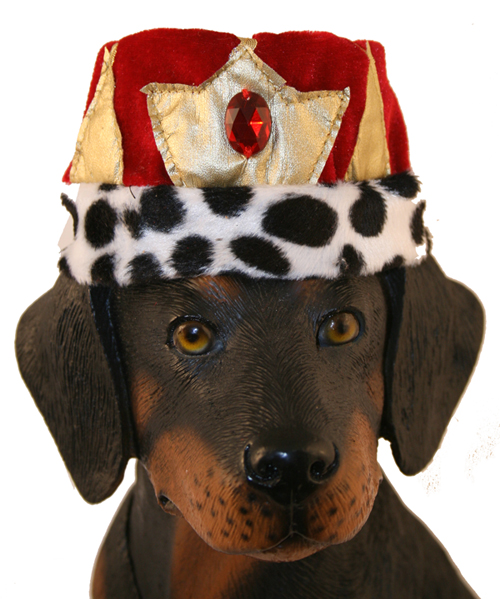 PAMPET / Puppe Love Dog Hat, Kings Crown, Large