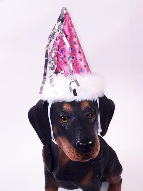 PAMPET / Puppe Love Dog Hat, Princess, Small