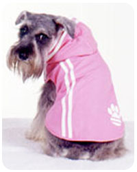 PAMPET / Puppe Love Dog Hoodie, Pawdidas, Size 4