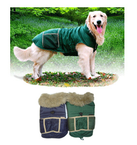 PAMPET / Puppe Love Dog Winter Raincoat, Green, Size 8