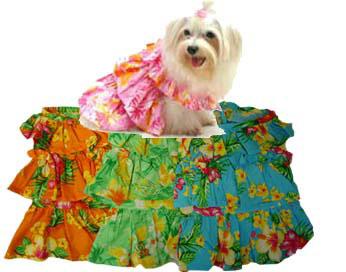 PAMPET / Puppe Love Dog Dress, Muu Muu Green, Size 4