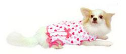 PAMPET / Puppe Love Dog Shirt, Million Hearts, Size 3