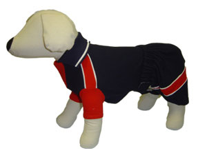 PAMPET / Puppe Love Dog Polo Shirt & Board Shorts Set, Blue & Red (Back Placket), Size 5
