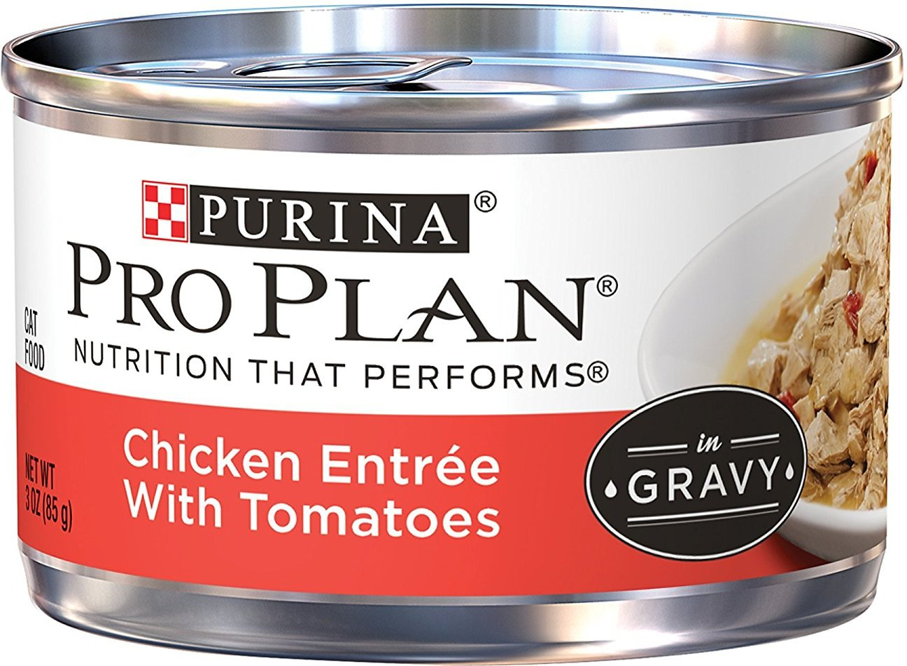 Purina Pro Plan Savor Adult Chicken Entrée with Tomatoes Braised in Gravy Canned Cat Food, 3-oz, case of 24