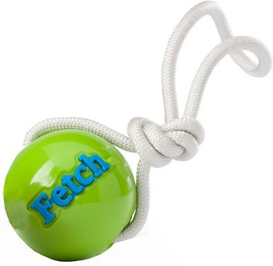 Planet Dog Orbee-Tuff Fetch Ball with Rope Dog Toy