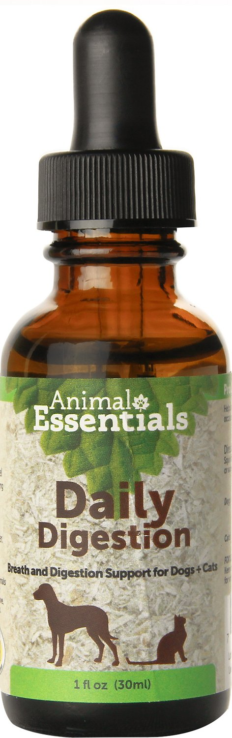 Animal Essentials Daily Digestion Breath & Digestion Support Dog & Cat Supplement, 1-oz bottle