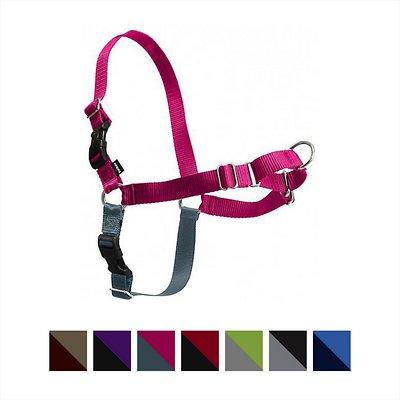 PetSafe Easy Walk Dog Harness, Raspberry/Gray, Medium