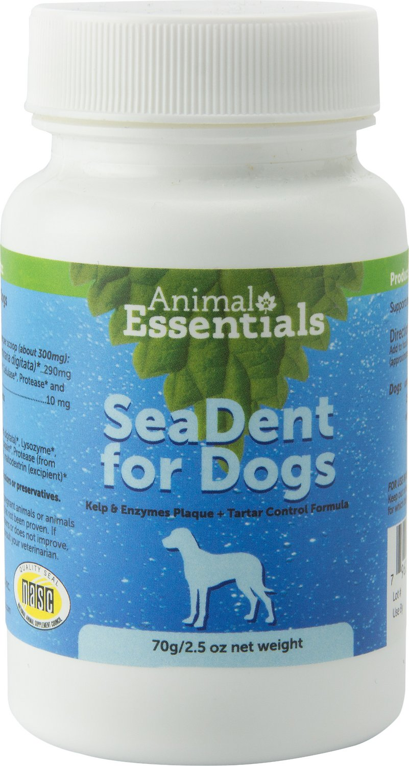 Animal Essentials SeaDent Kelp & Enzymes Plaque & Tartar Control Dog Supplement, 2.5-oz bottle