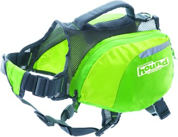 Outward Hound DayPak for Dogs, Green, Large