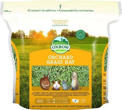 Oxbow Orchard Grass Hay Small Animal Food, 40-oz bag