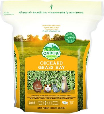 Oxbow Orchard Grass Hay Small Animal Food, 15-oz bag