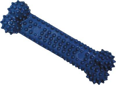 Nylabone Dental Chew Bone Dog Toy, Medium