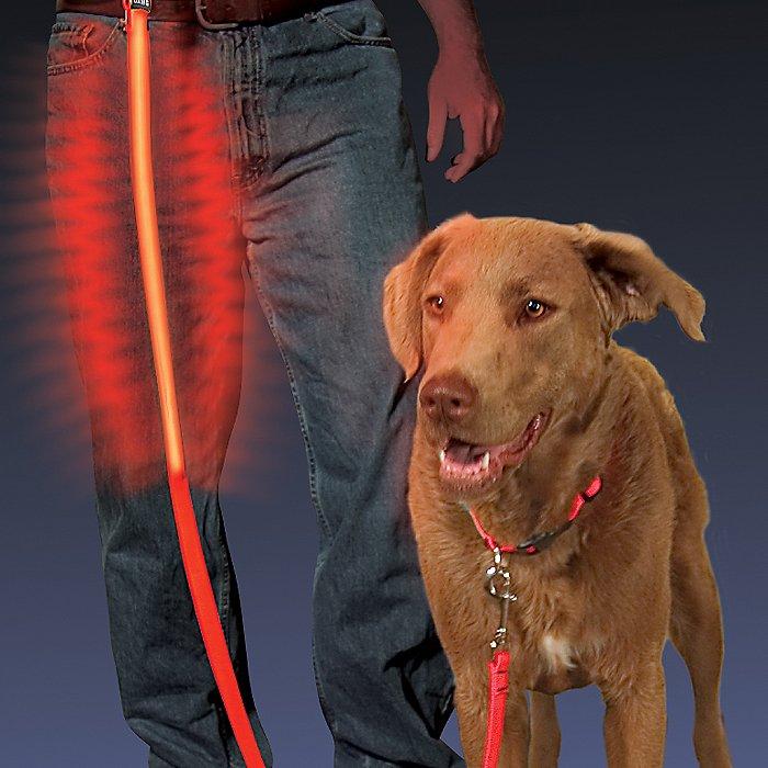 Nite Ize Nite Dawg LED Dog Leash