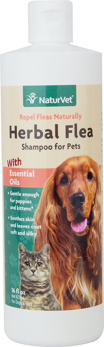 NaturVet Herbal Flea Dog & Cat Shampoo, 16-oz bottle