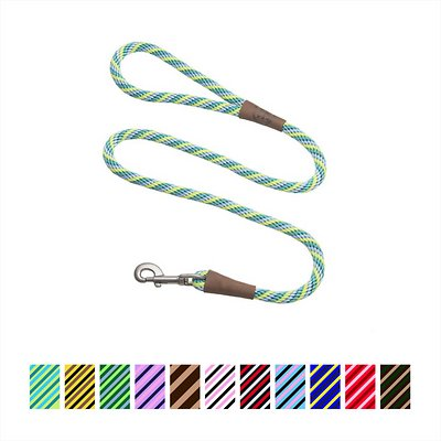 Mendota Products Large Snap Striped Dog Leash, Seafoam, 6-ft
