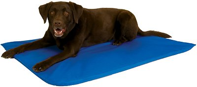 K&H Pet Products Cool Bed III Dog Bed, Blue