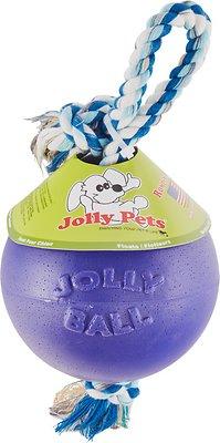 Jolly Pets Romp-n-Roll Dog Toy, Purple