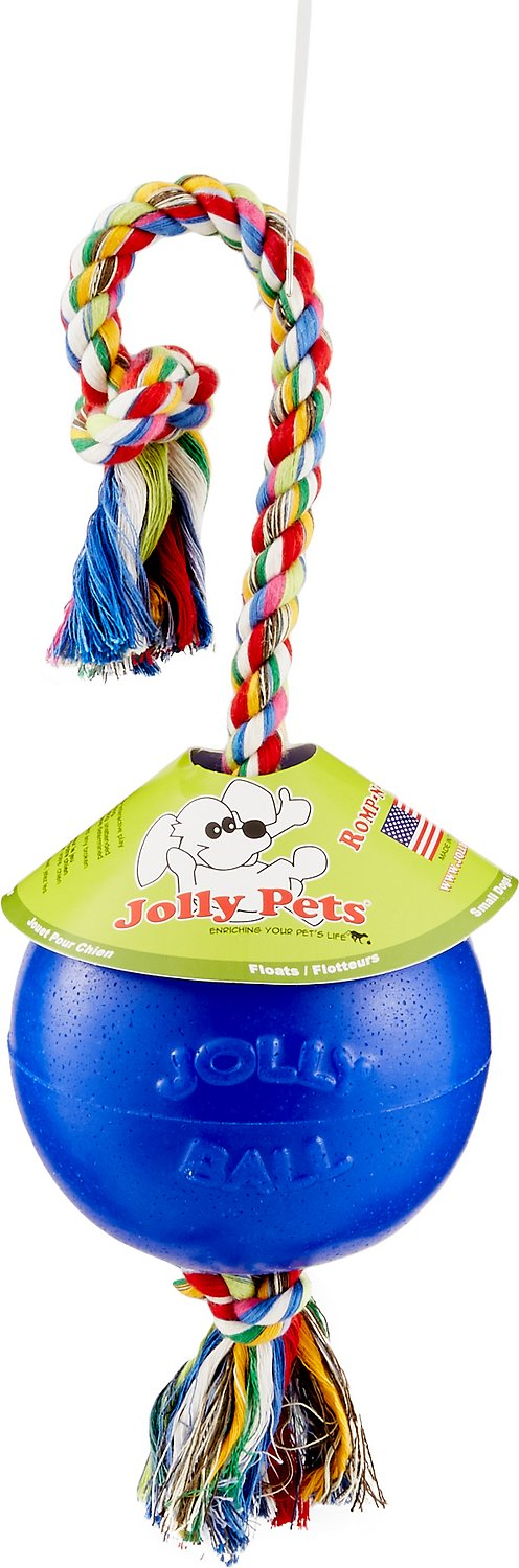 Jolly Pets Romp-n-Roll Dog Toy, Blue
