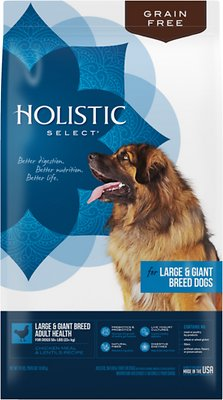 Holistic Select Large & Giant Breed Chicken Meal & Lentils Natural Grain Free Dry Dog Food