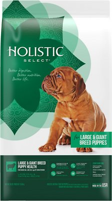 Holistic Select Large & Giant Breed Puppy Health Lamb Meal & Oatmeal Recipe Dry Dog Food