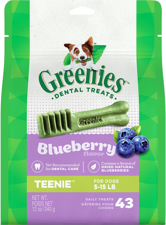 Greenies Bursting Blueberry Teenie Dental Dog Treats, 43-count