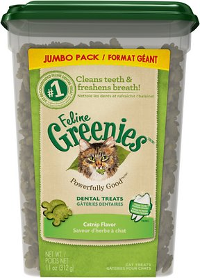 Feline Greenies Dental Treats Catnip Flavor Cat Treats, 11-oz tub