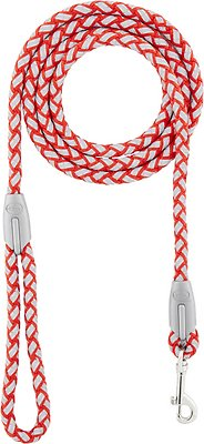 Four Paws Nite Brite Reflecting Dog Leash, Red, Small Color: Red, Size: Small