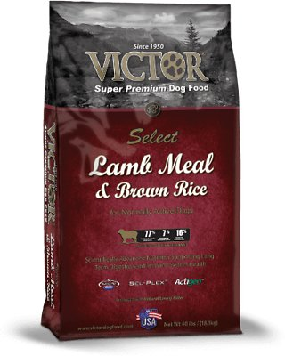 Victor Lamb Meal & Brown Rice Dry Dog Food