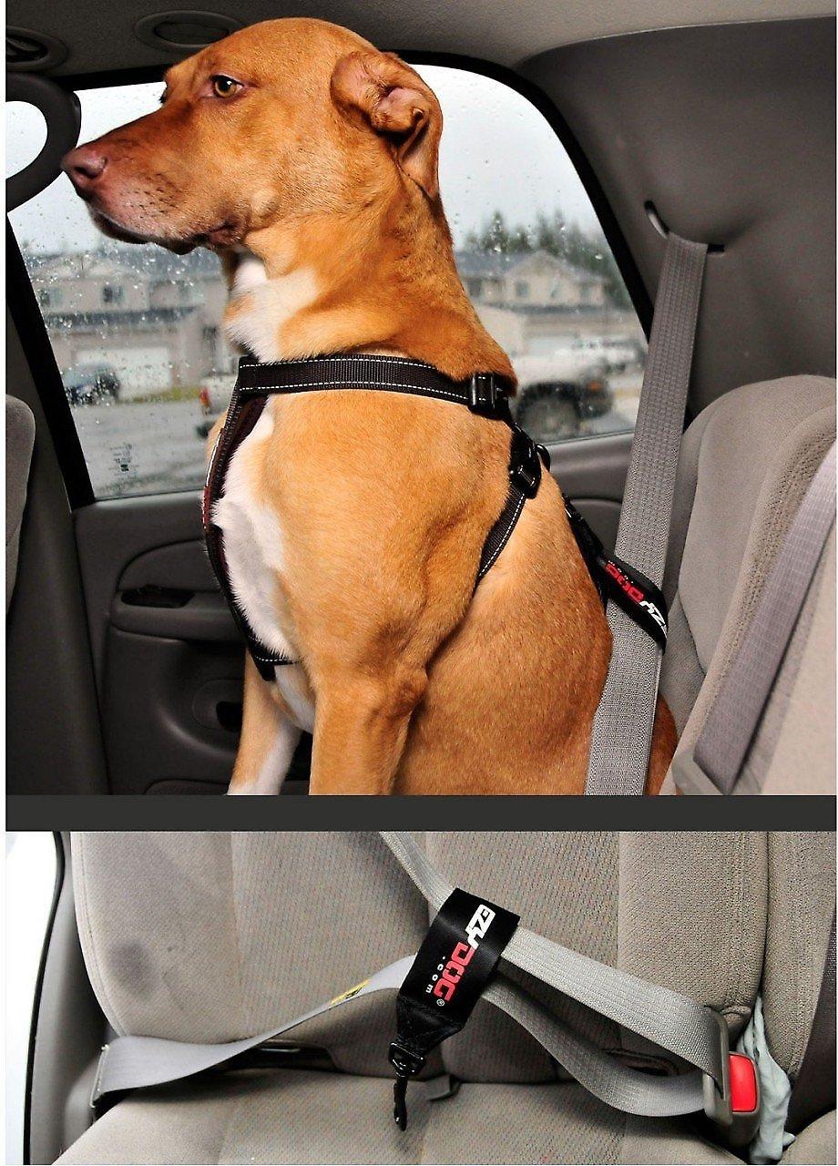 EzyDog Seat Belt Restraint, Black