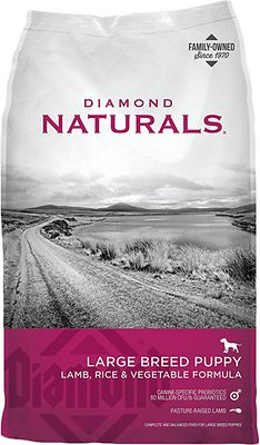 Diamond Naturals Large Breed Puppy Formula Dry Dog Food