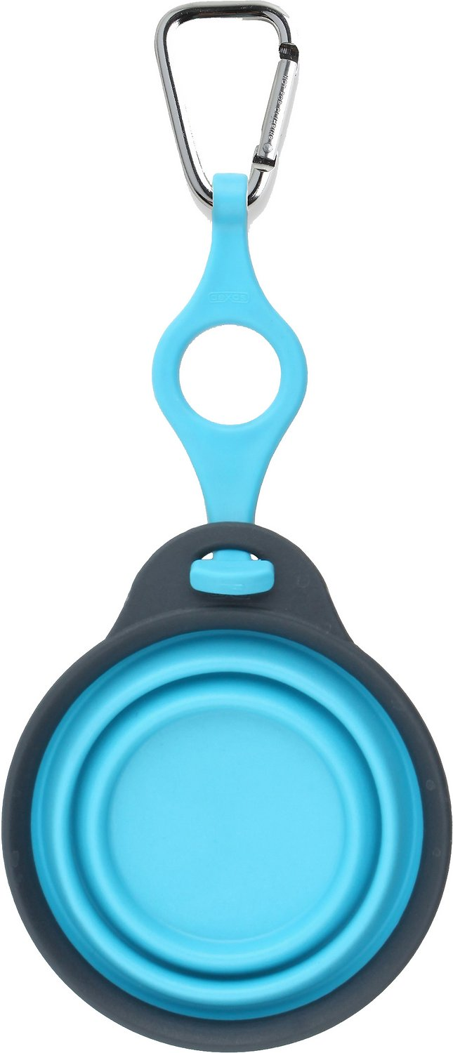 Dexas Popware for Pets Collapsible Travel Cup with Bottle Holder & Carabiner, Gray/Blue