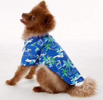 Doggie Design Hawaiian Camp Shirt for Dogs, Ocean Blue & Palms, Medium
