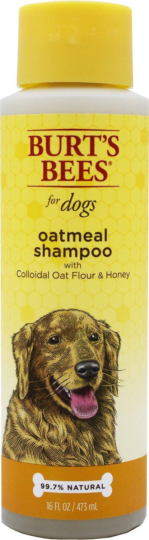 Burt's Bees Oatmeal Shampoo with Colloidal Oat Flour & Honey for Dogs, 16-oz bottle