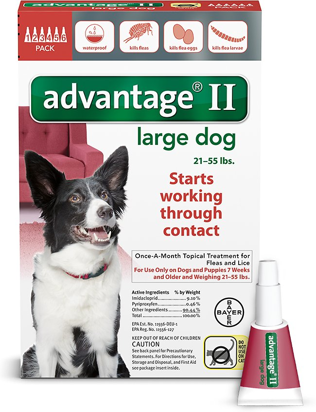 Bayer Advantage II Flea Treatment for Large Dogs 21-55 lbs, 4-pack